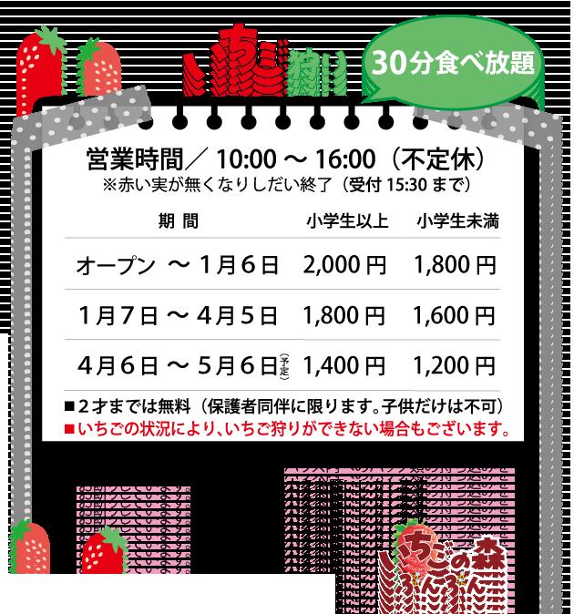 千葉県市原市 いちご狩り 苺 イチゴ いちごの森ぶんぶん 料金